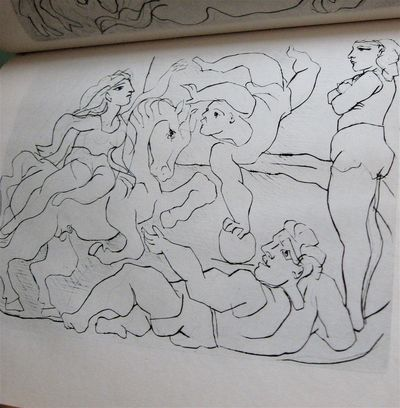 Picasso4