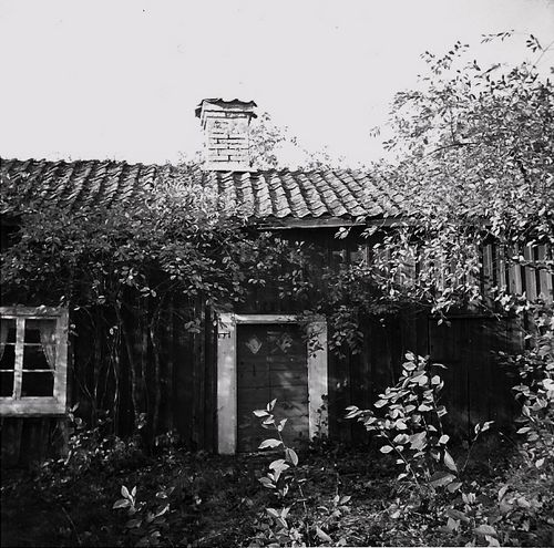 Found photo:bw cottage